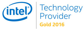 Intel Technology Provider Gold